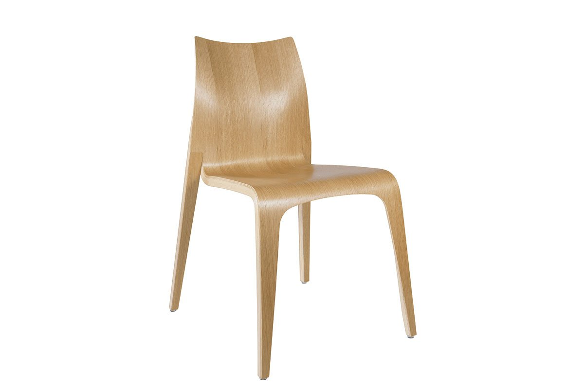 Contemporary plywood chair from the oak, lacquered